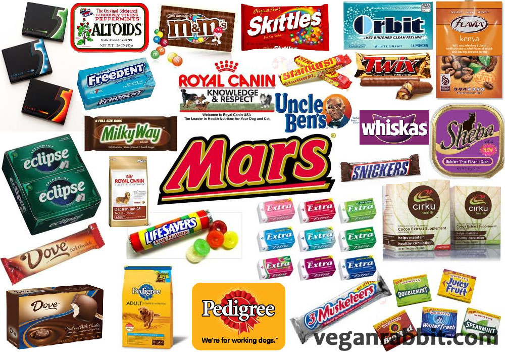 chocolate companies Discover the best candy & chocolate in best sellers find the top 100 most popular items in amazon grocery & gourmet food best sellers.