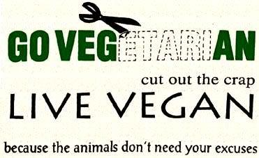 go vegan because the animals don't need your excuses