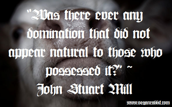 cow john stuart mill quote was there ever any domination tht did not appear natural to those who possessed it