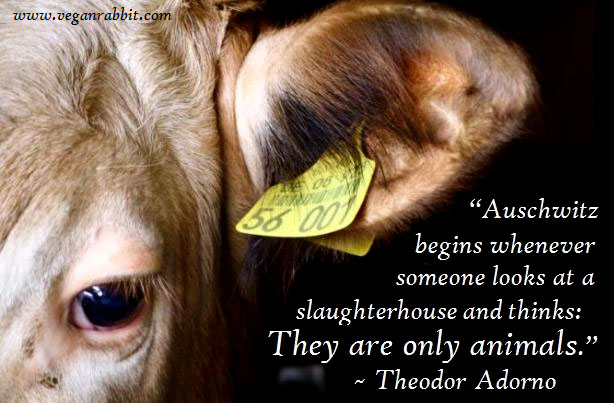 auschwitz begins whenever someone looks at a slaughterhouse and thinks they are only animals theodor adorno
