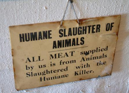 humane meat slaughter vegan veganism vegetarian vegetarianism