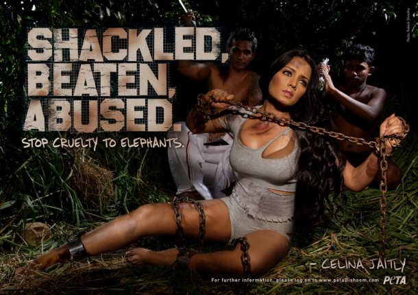 peta sexist advertisement elephants