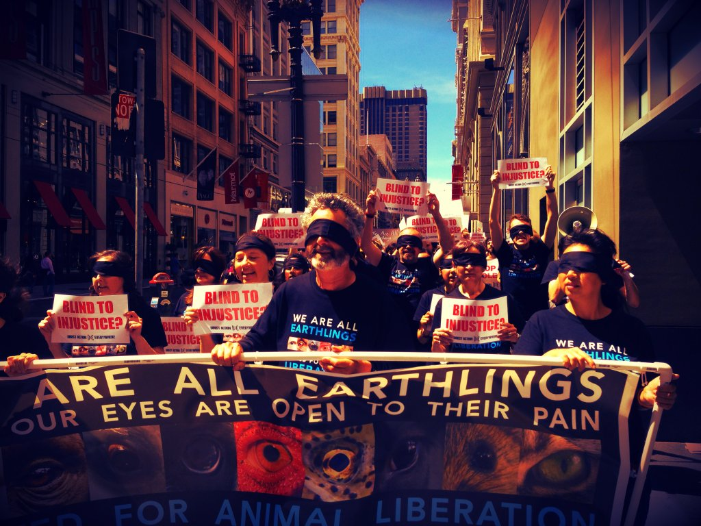 Activists take to the streets of San Francisco, California to demand people open their eyes to the injustices animals endure at human hands.